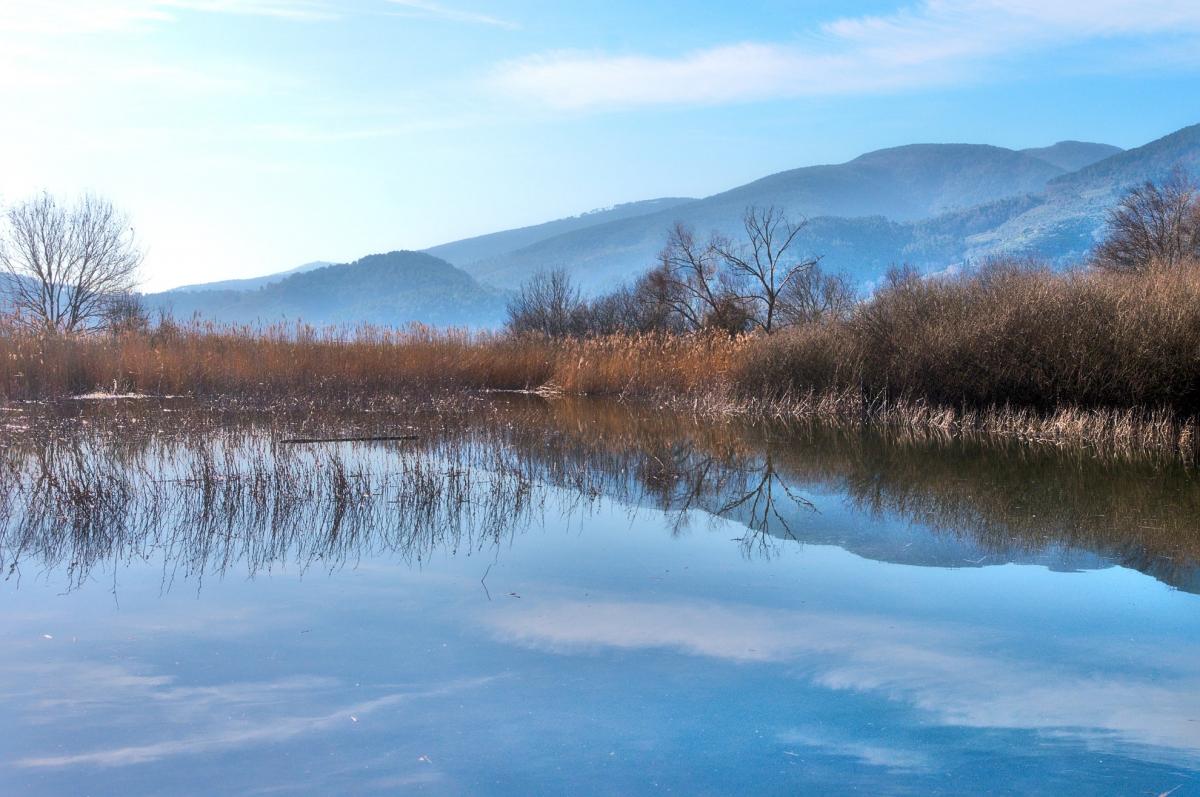 oasi bottaccio